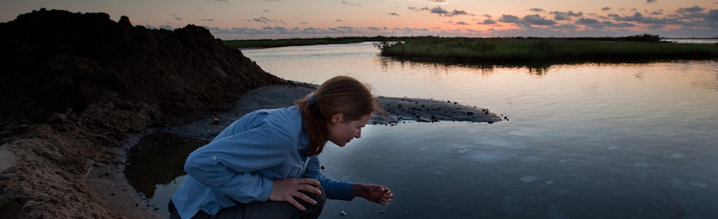 Angelina Freeman, EDF Coastal Scientist, surveys oil on Elmer's Island Wildlife