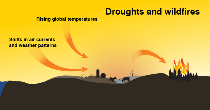 Droughts and wildfires in the era of global warming