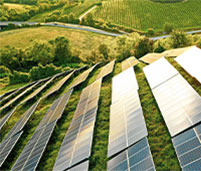 Solar panels surrounded by green fields