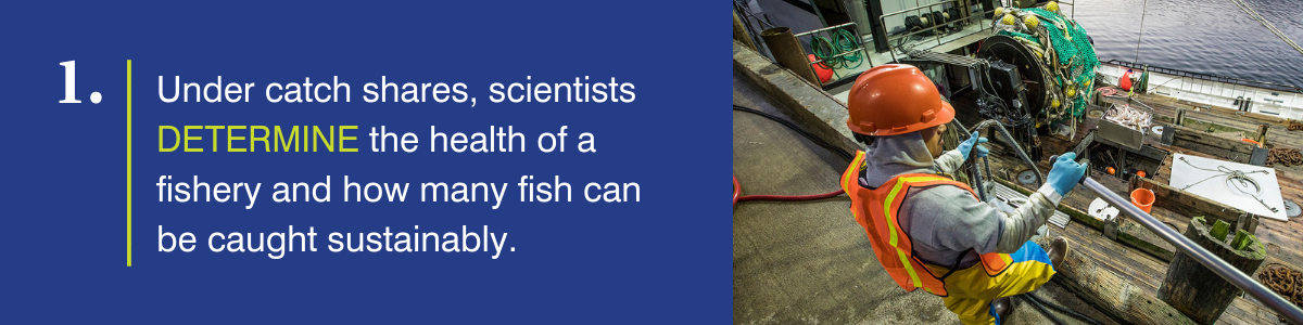 Under catch shares, scientists determine the health of a fishery and how many fish can be caught sustainably
