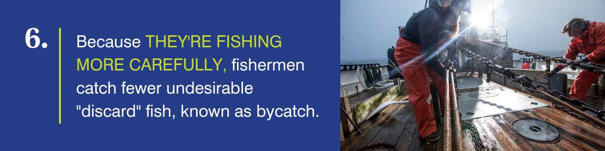 Because they're fishing more carefully, fishermen catch fewer undesirable discard fish, known as bycatch.