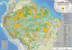 Indigenous Territories (orange) and Protected National Areas (green) in the Amazon Basin.