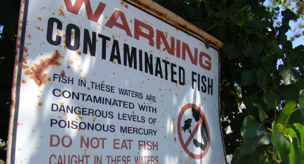 sign warning of mercury contamination
