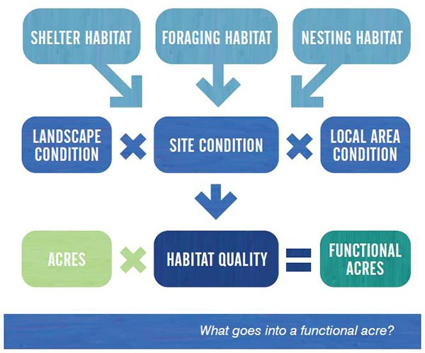 Functional acre for Grouse
