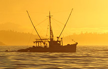 United States fisheries