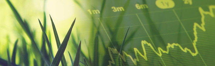 Collage of grass and financial chart