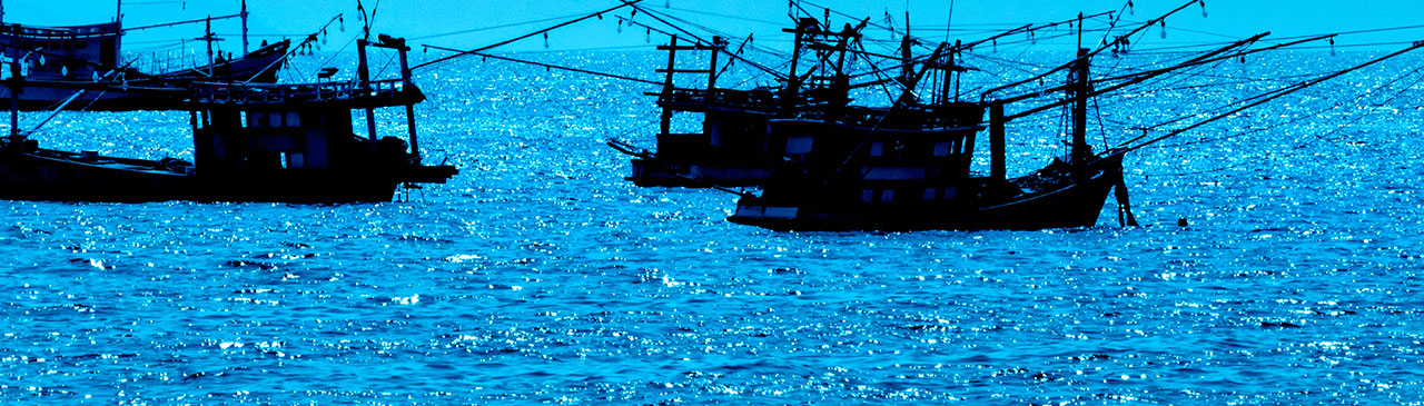 Multiple fishing boats crowding the ocean