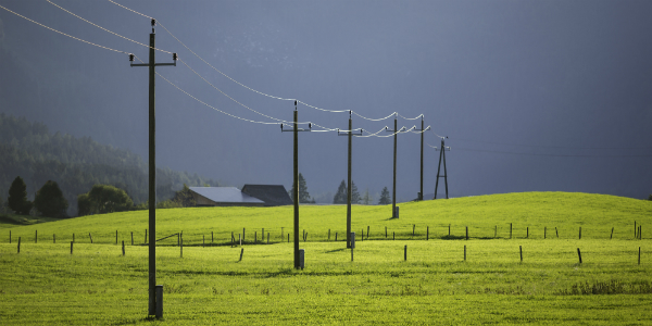 power lines across meadow