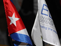 Cuba and EDF flags